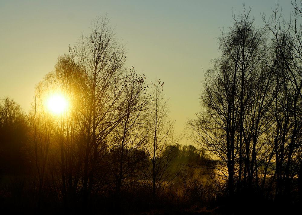 Sonnenaufgang an der Donau