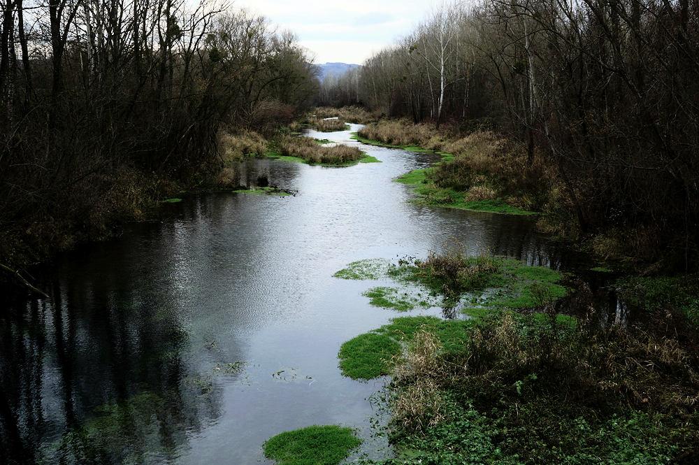 Nebenfluter der Donau